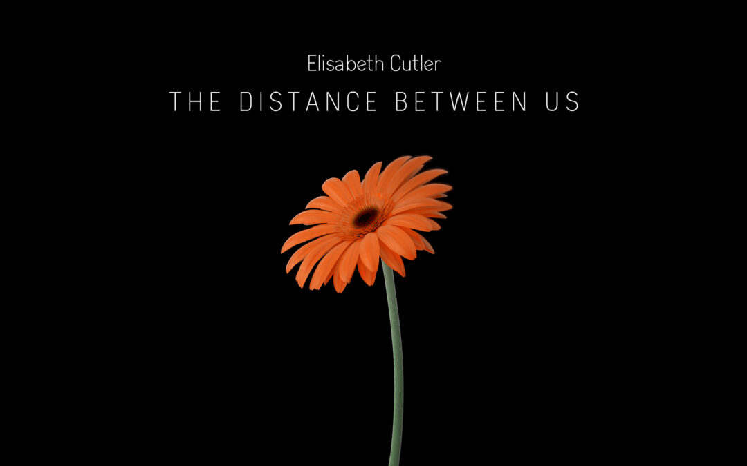 """The Distance Between Us"". My new song."